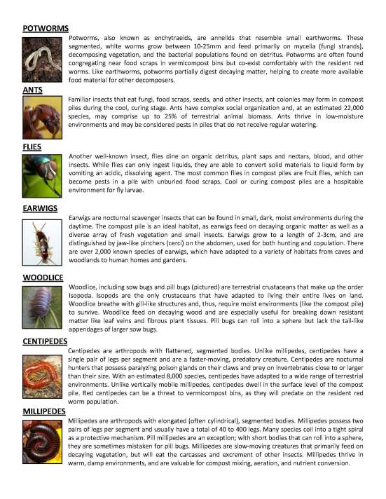 Decomposer Guide_Page_3