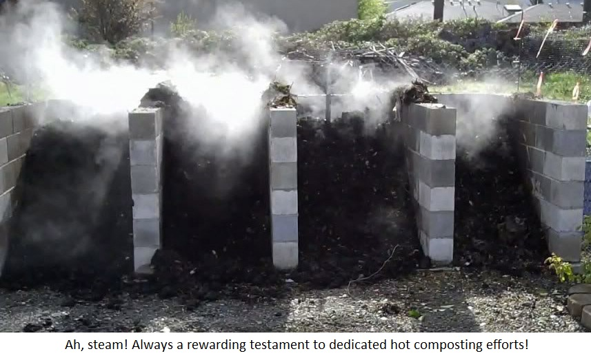 Image result for photo steaming pile of compost manure