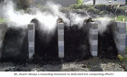 steaming hot compost-caption