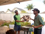 Have you heard about our Green LivingWorkshops?