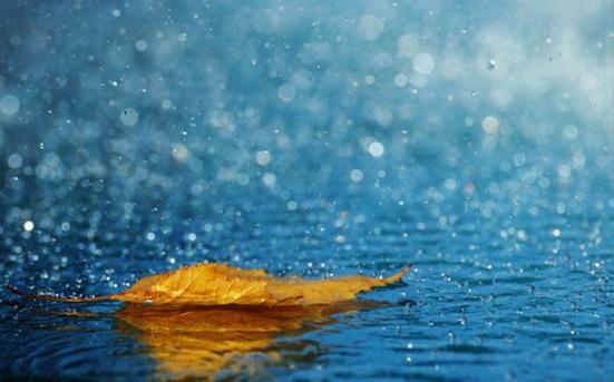 beautiful-rain-pictures-45-photos-36