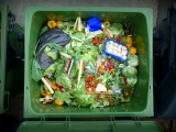 New Methane Reduction Law Promotes Organics Recycling